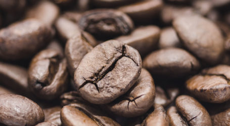 South Sudan to export coffee for the first time