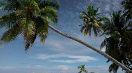 Bora Bora a paradise in the Pacific