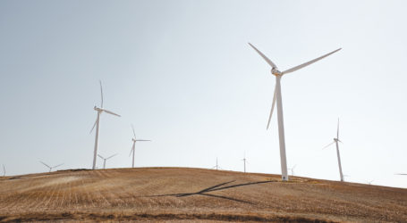 Renewable electricity overtakes coal for first time in UK