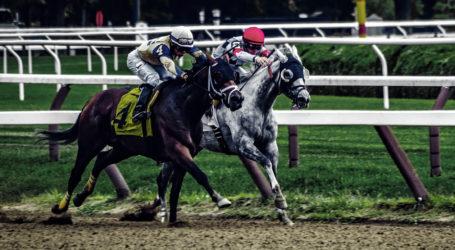 American Pharoah 'galloped' into history